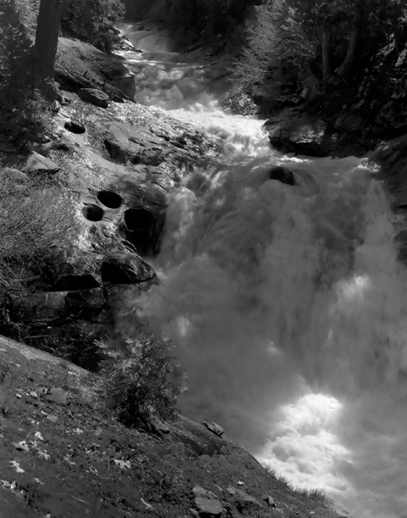 Silver Creek -- Spring:  Seeing Obscured by Shadow and Mystery